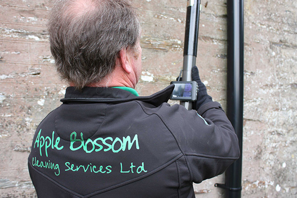 Apple Blossom Cleaning achieves increased workforce visibility and boosts operational performance using SmartTask